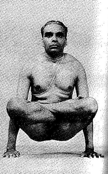 Tolasana-Scales-Pose-Iyengar