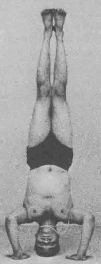 Salamba-Sirsasana-II-Headstand-Iyengar