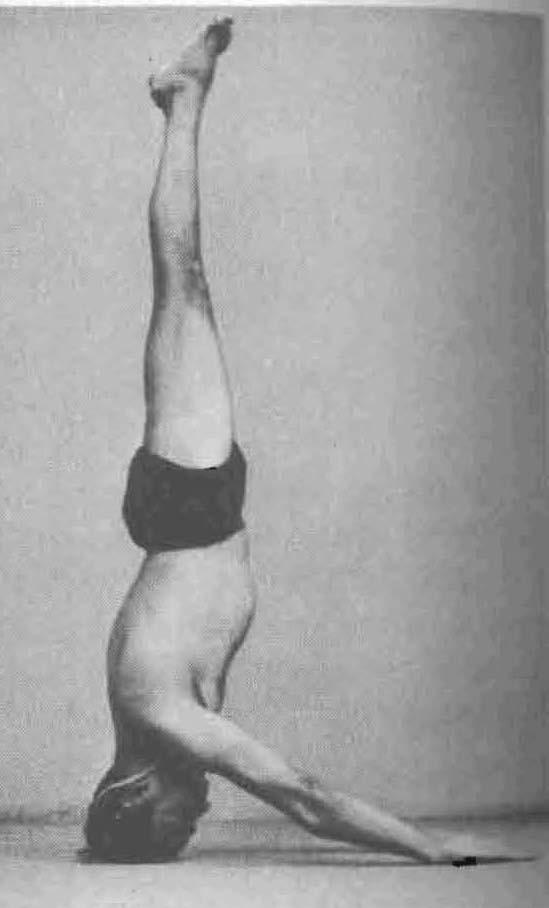 Mukta-Hasta-Sirsasana-Headstand-Iyengar