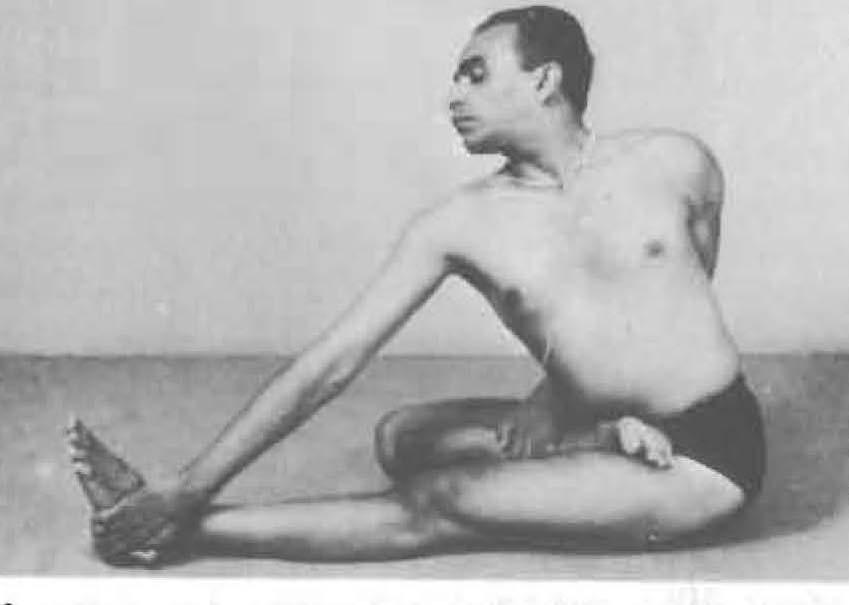 119-ardha-matsyendrasana-2-yoga-pose-iyengar.jpg