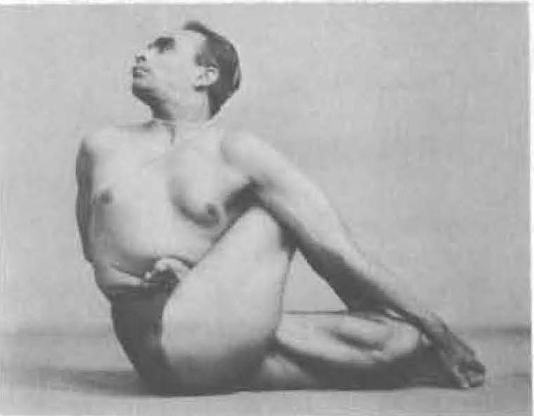 120-ardha-matsyendrasana-3-yoga-pose-iyengar.jpg
