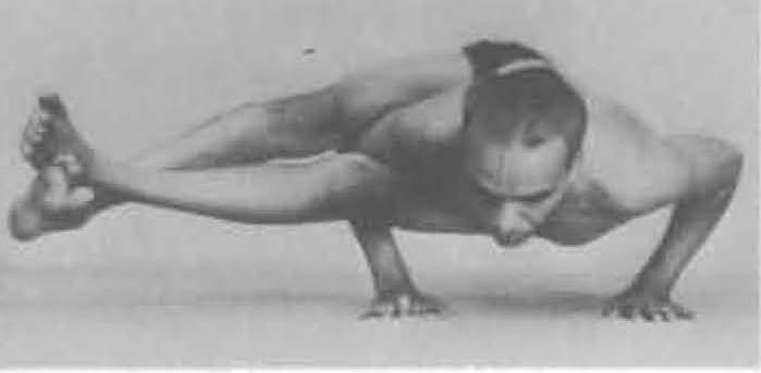 122-astavakrasana-yoga-pose-iyengar.jpg