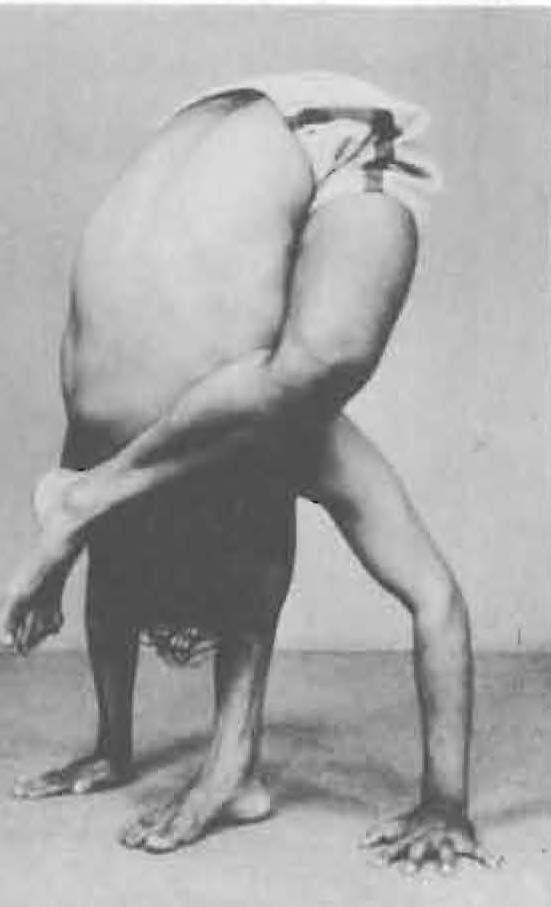 142-ruchikasana-yoga-pose-iyengar.jpg