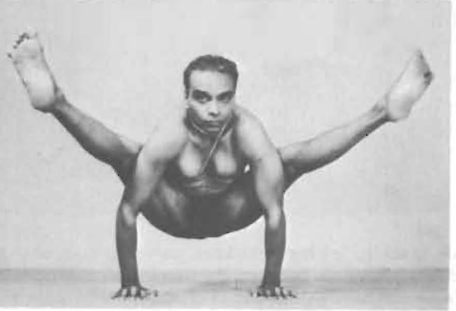 147-tittibhasana-yoga-pose-iyengar.jpg