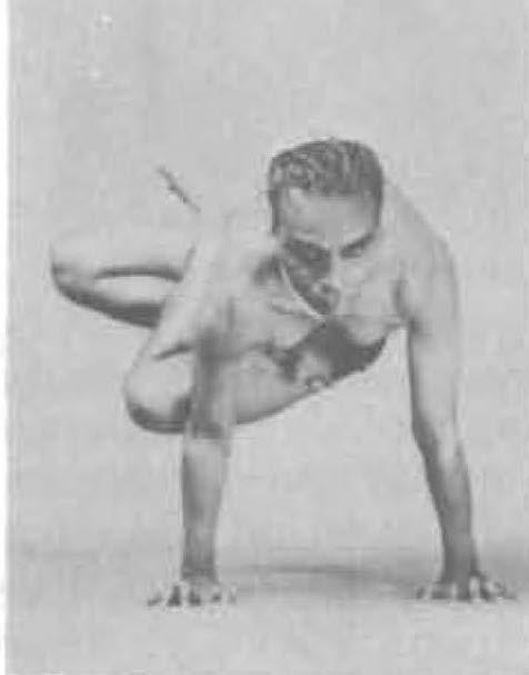 154-parsva-kukkutasana-yoga-pose-iyengar.jpg