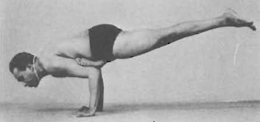 156-eka-pada-galavasana-yoga-pose-iyengar.jpg