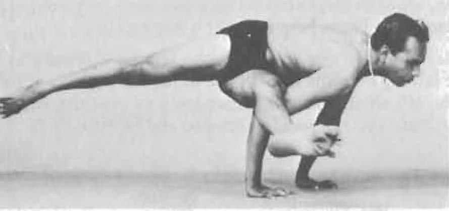 158-eka-pada-koundinyasana-1-yoga-pose-iyengar.jpg