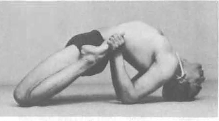 163-supta-bhekasana-yoga-pose-iyengar.jpg