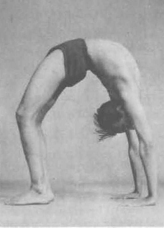 171-urdhva-dhanurasana-1-yoga-pose-iyengar.jpg