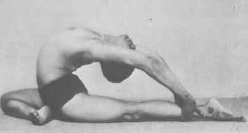 185-valakhilyasana-yoga-pose-iyengar.jpg