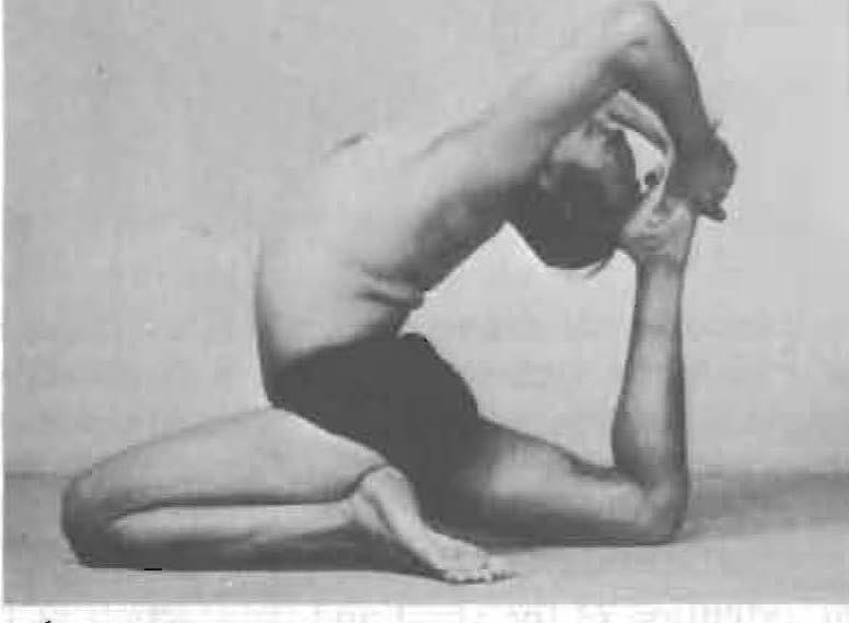 187-eka-pada-rajakapotasana-3-yoga-pose-iyengar.jpg