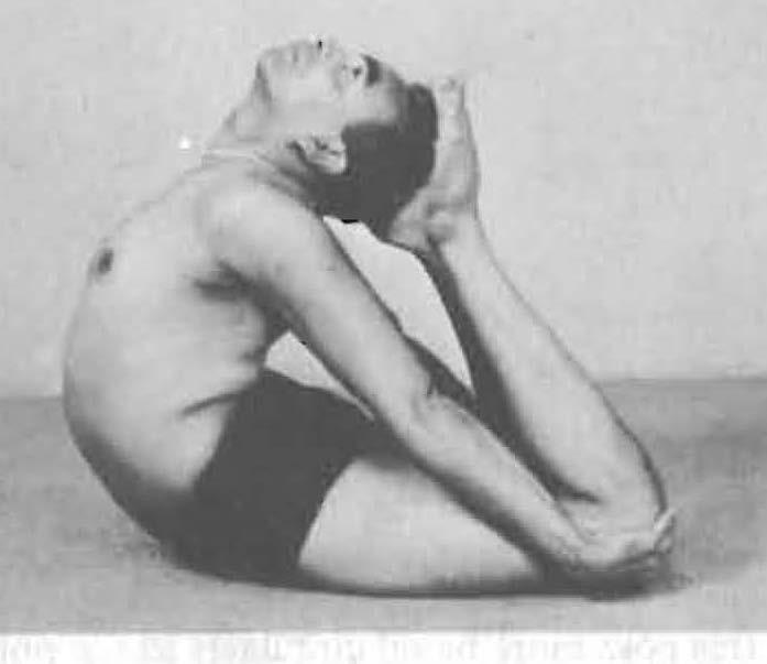 190-rajakapotasana-yoga-pose-iyengar.jpg