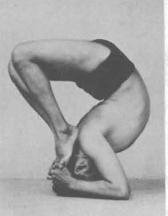 195-sirsa-padasana-yoga-pose-iyengar.jpg