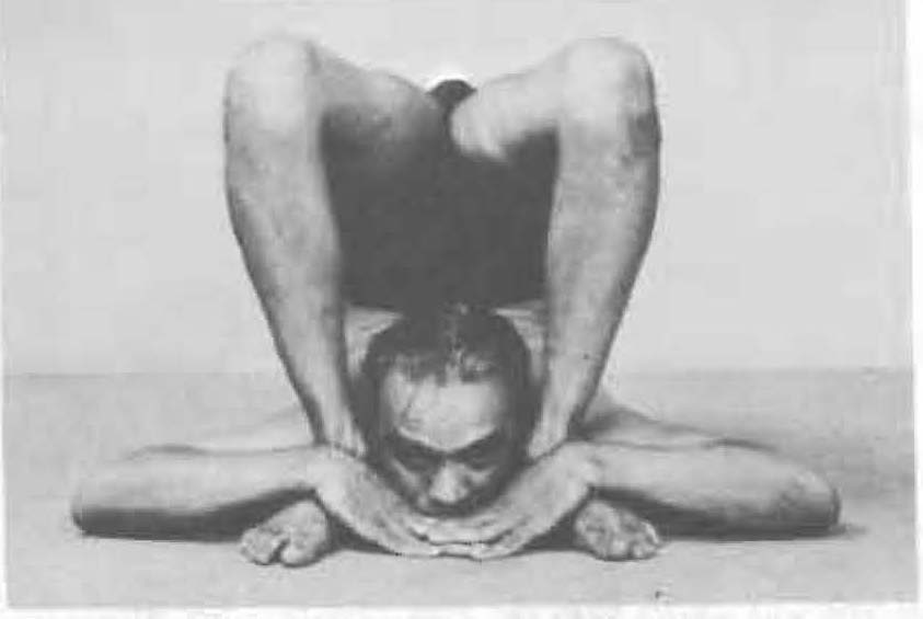 196-ganda-bherundasana-yoga-pose-iyengar.jpg