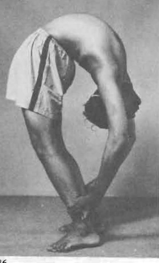 198-tiriang-mukhottanasana-yoga-pose-iyengar.jpg