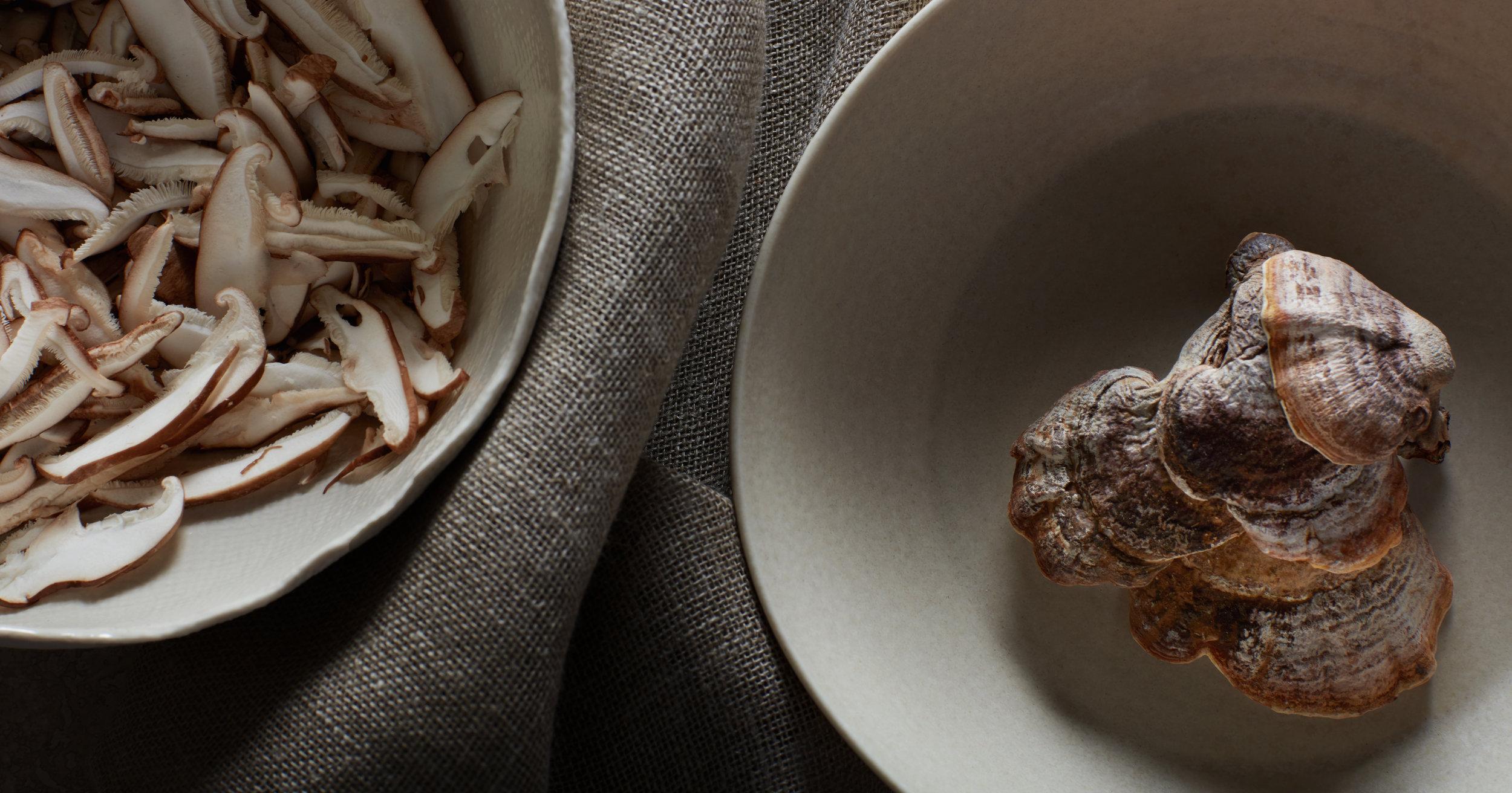 bt_journal_mushroom-coffee_01.jpg