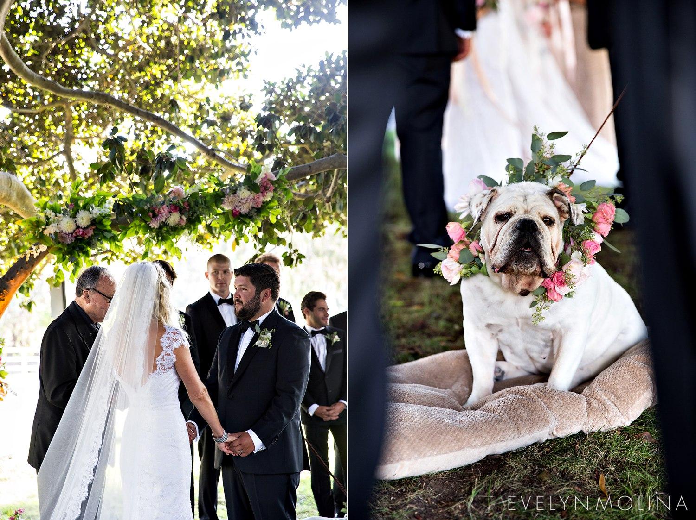 Rancho Santa Fe Wedding - Morgan and Mario_0044.jpg