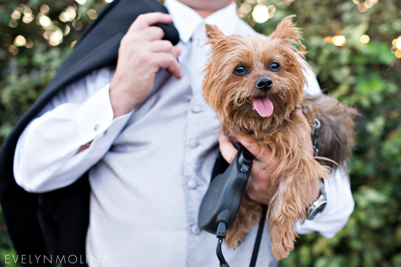 Coronado Wedding - Annie and Frank_082.jpg