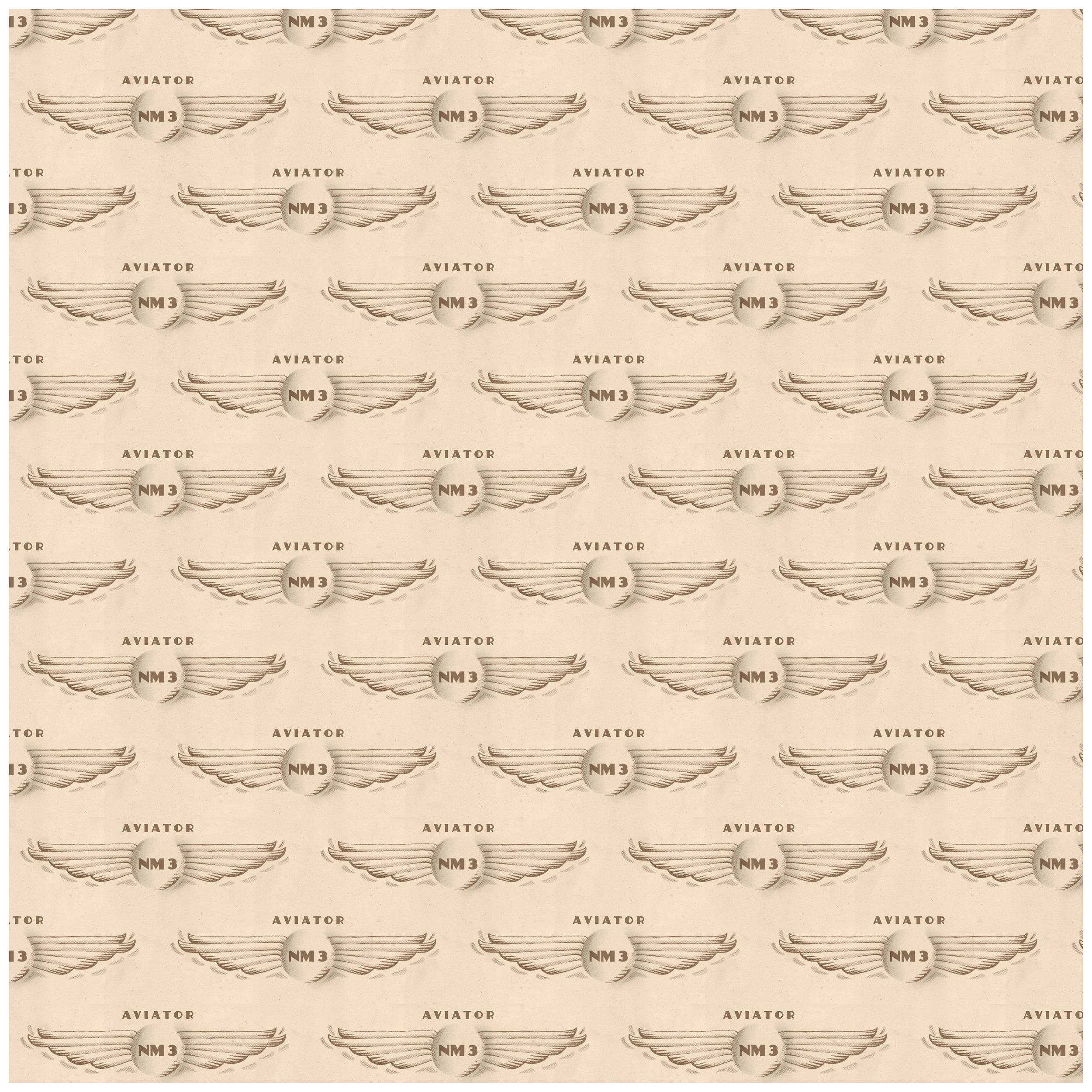 Aviator prints 1019146.jpg