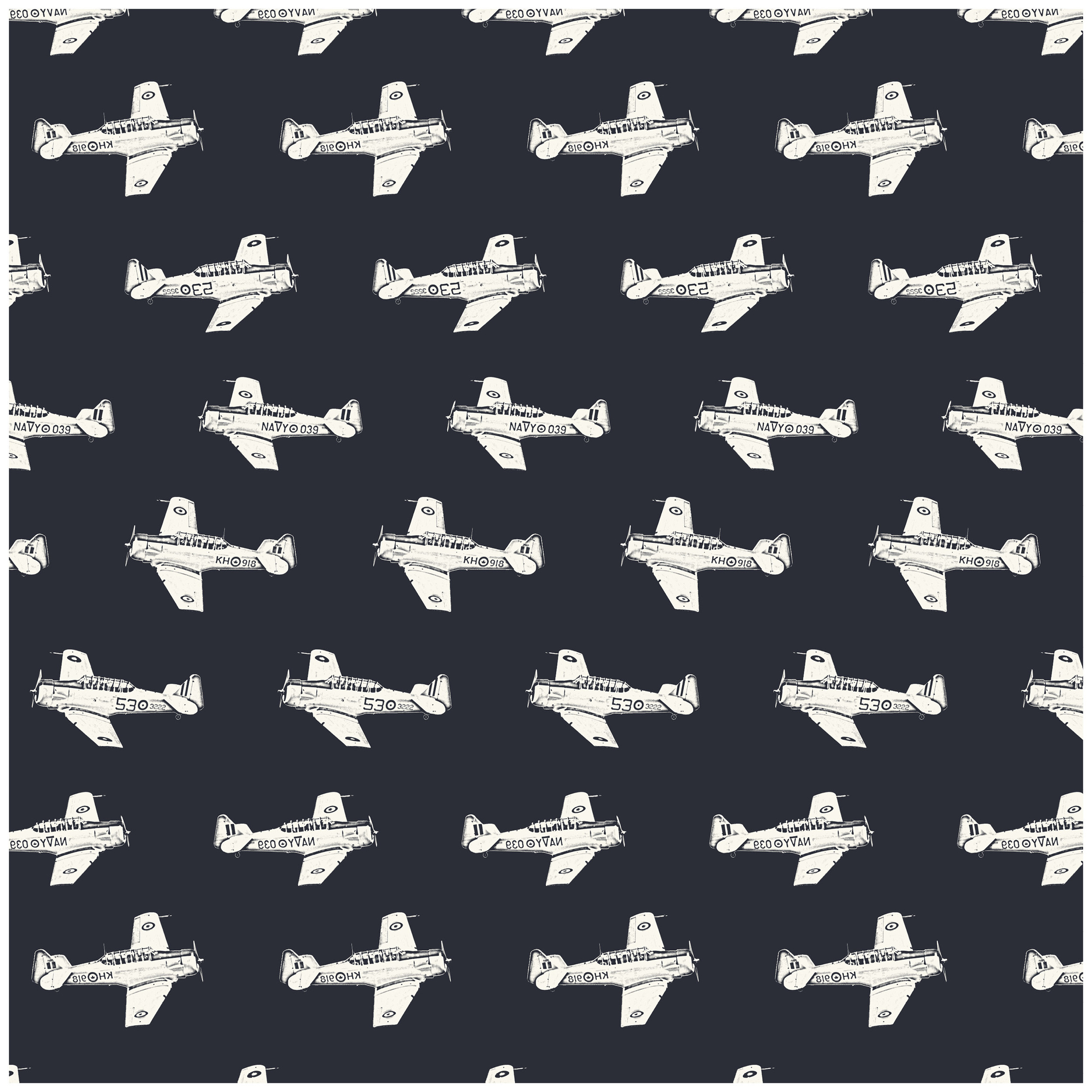 Aviator prints 1019144.jpg