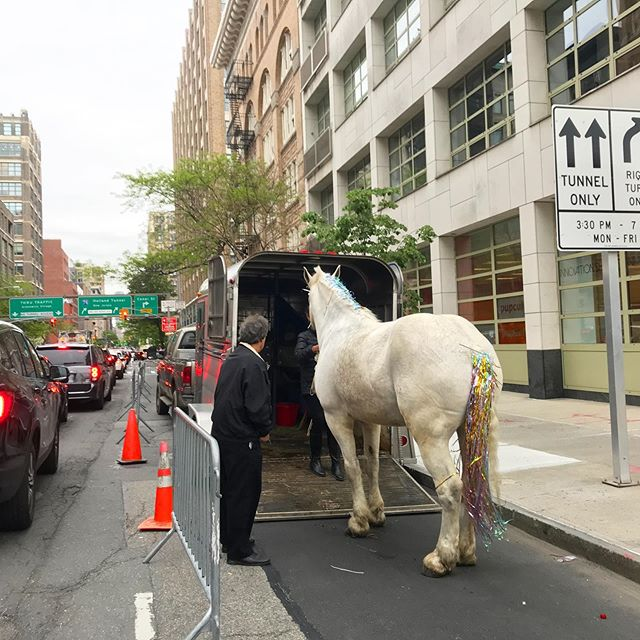 Just another day in the city- a unicorn coming out of a trailer...