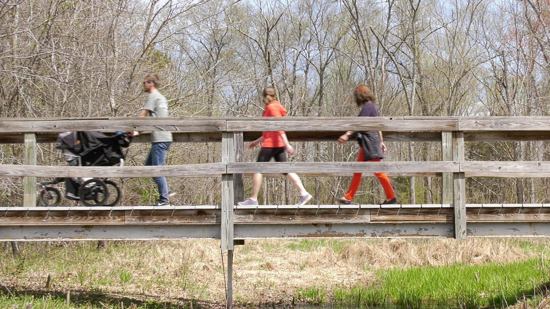bridge walk.jpg