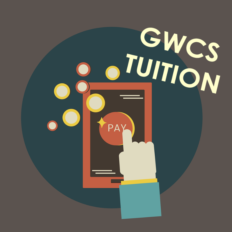 tuition online logo.png