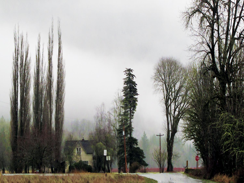 Morning in Rural Washington