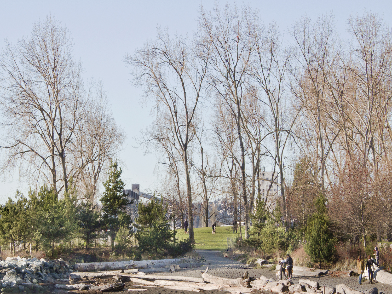 Beach and Park by Puget Sound, Seattle