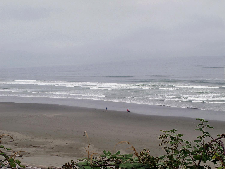 A Walk Along the Shore