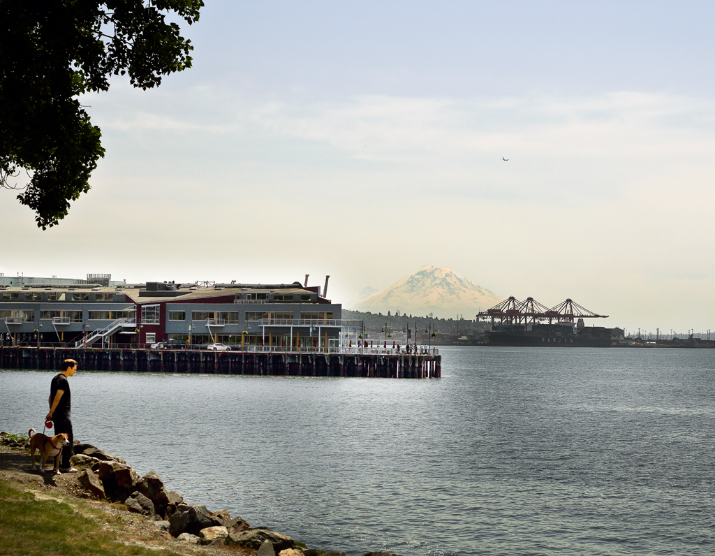 Afternoon Stroll by Puget Sound