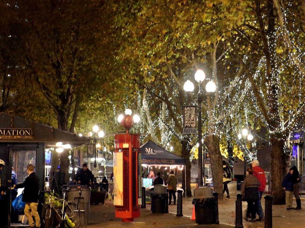 November in Seattle - Occidental Park