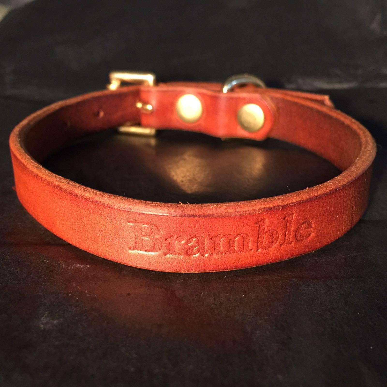 Bramble collar.jpeg