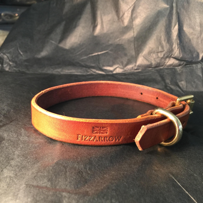 FizzArrow Dog collar 2.jpg.jpg