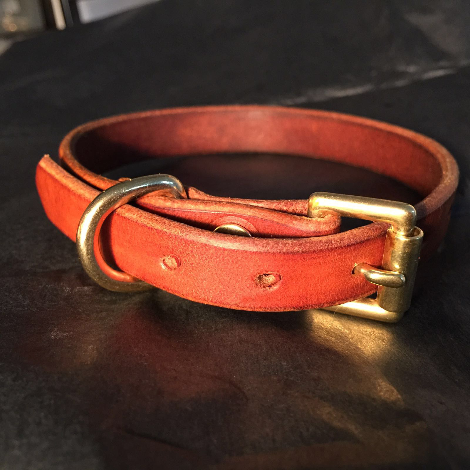 FizzArrow Dog collar 4.jpg