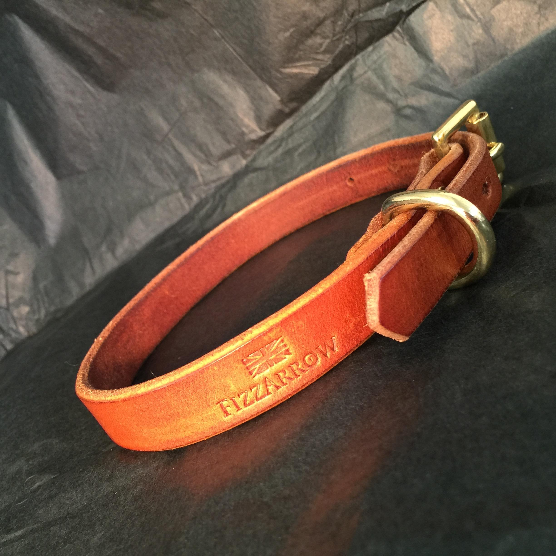 FizzArrow Dog collar.jpg