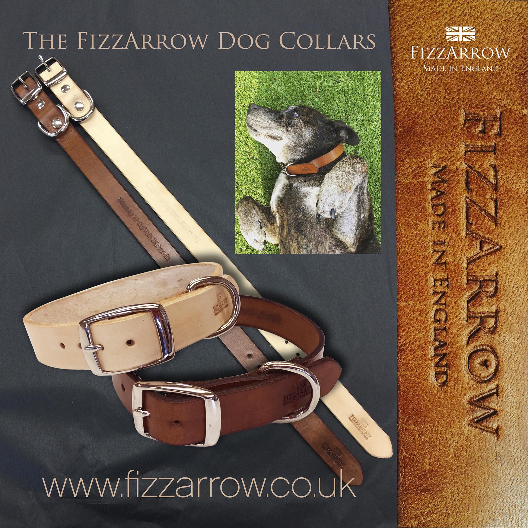 FizzArrow Dog Collars sm.jpg