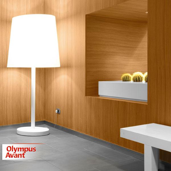 OlympusAvant-VA-8082.jpg