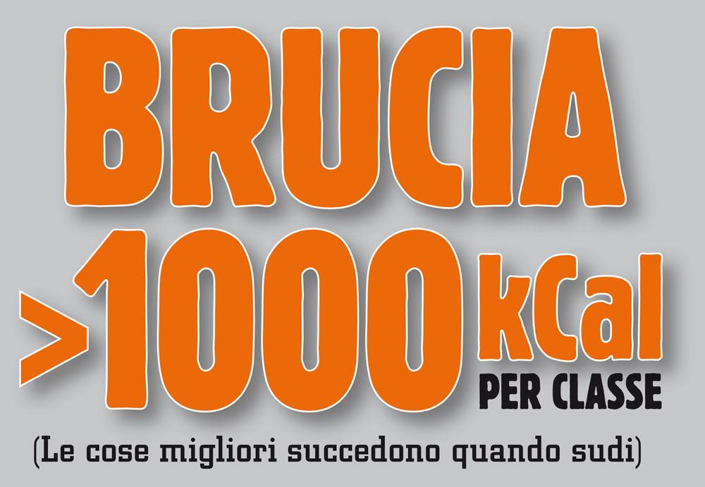 Brucia1000-1000.jpg