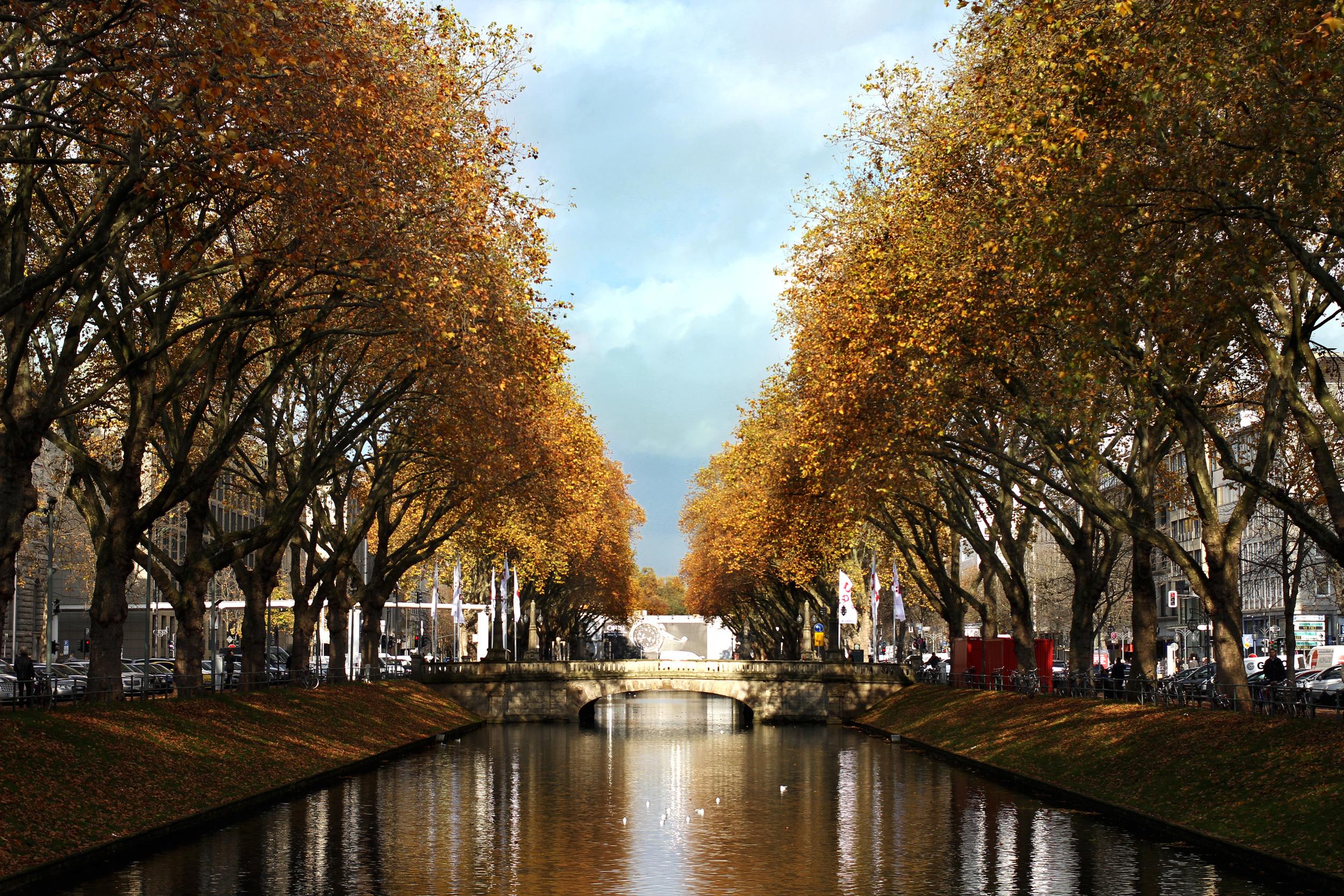 Königsallee i novembersolen, två minuters promenad från vårt institut.