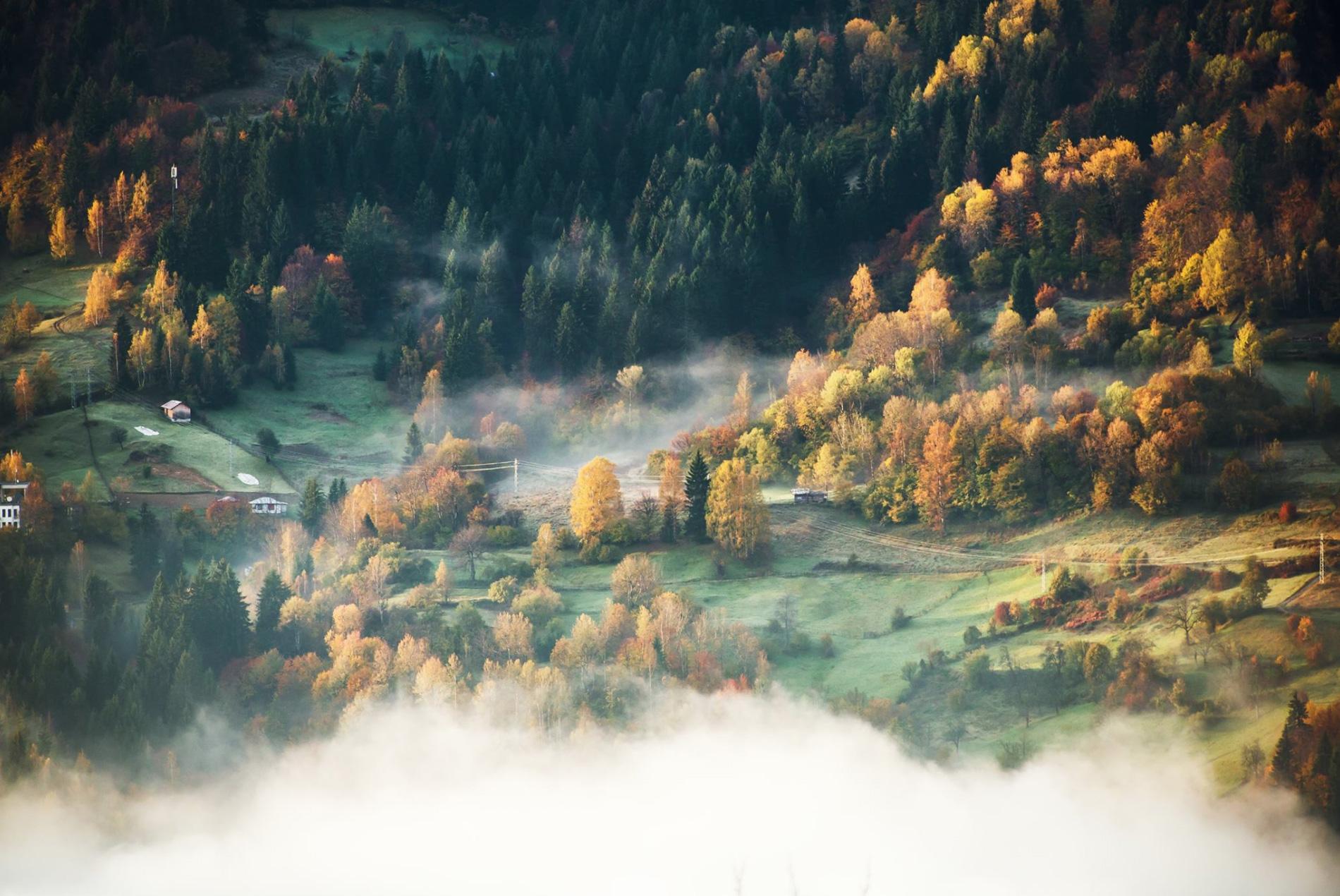depositphotos-mistylandscape.jpg