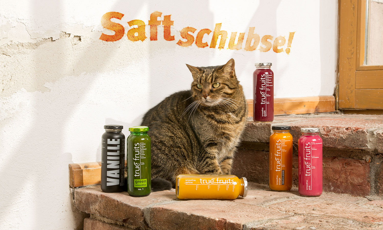 """Katze """"Abbey"""" spielt mit in unserer fotografischen Hommage an die Kommunikation von """"true fruits""""."""