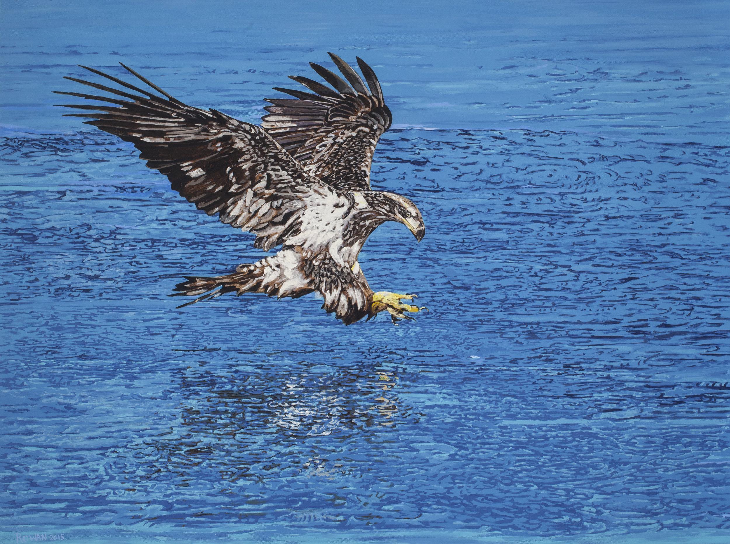 CR0821_precision eagle.jpg