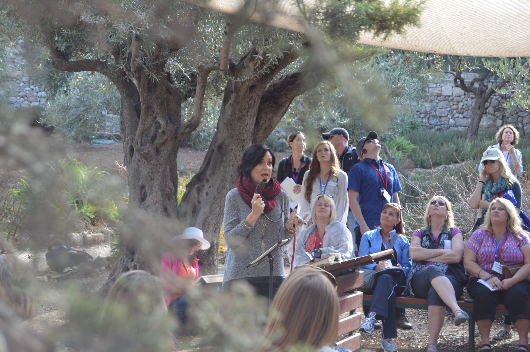 Watching on as Lysa Terkeurst teaches in the Garden of Gethsemane - a garden full of beautiful olive trees.