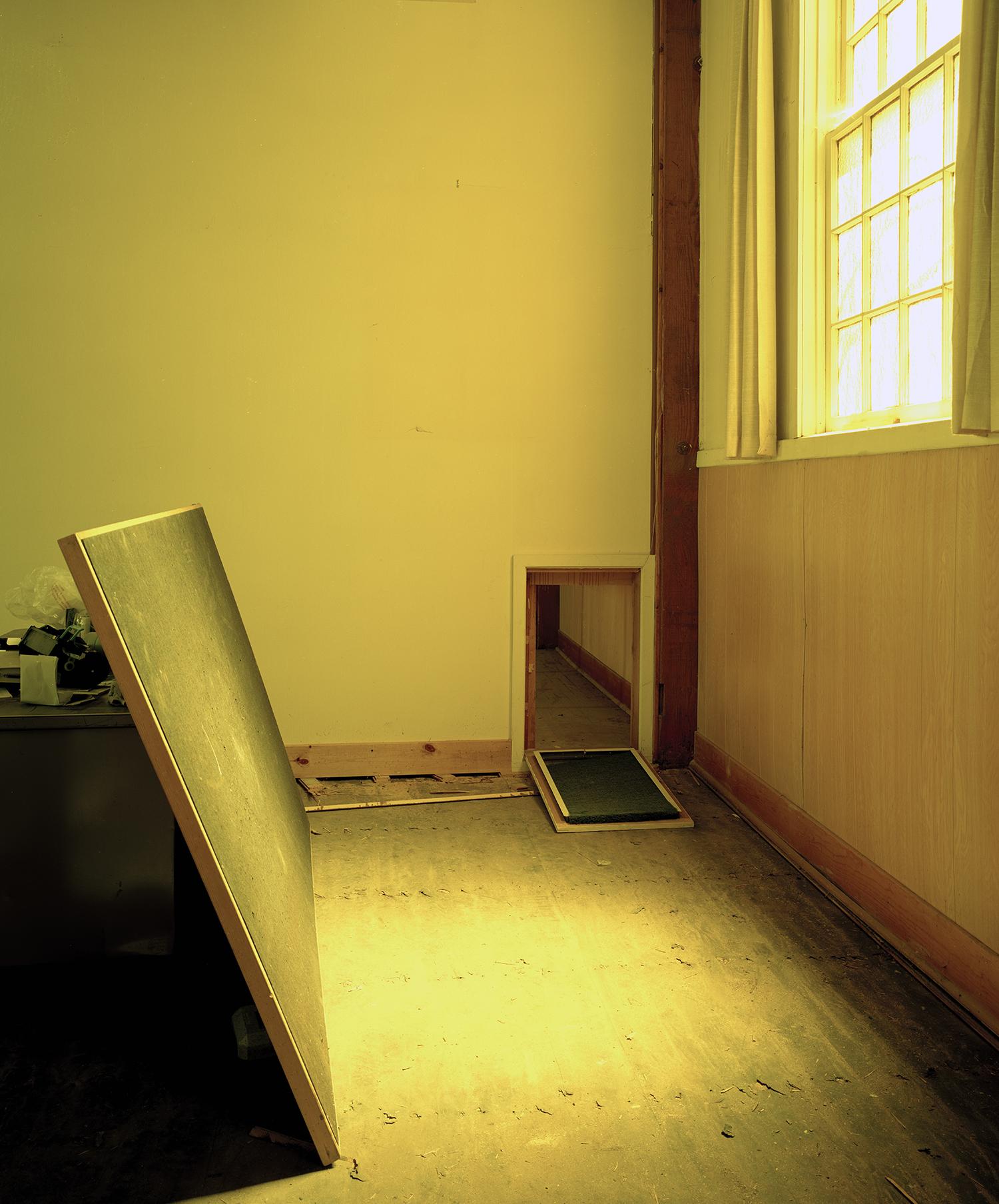 Trap Door, 2010