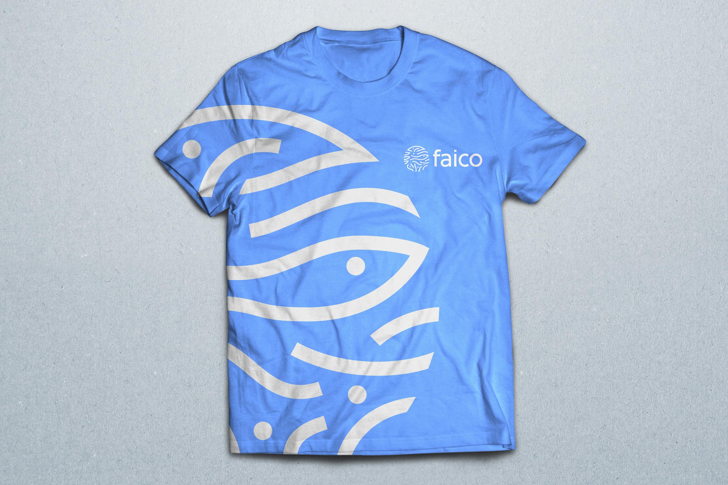 Faico3.jpg