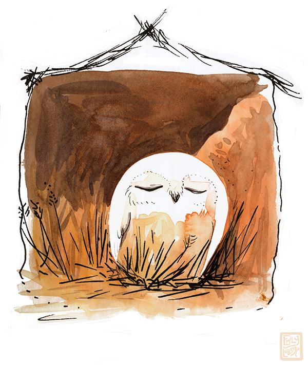 owl_wm.jpg