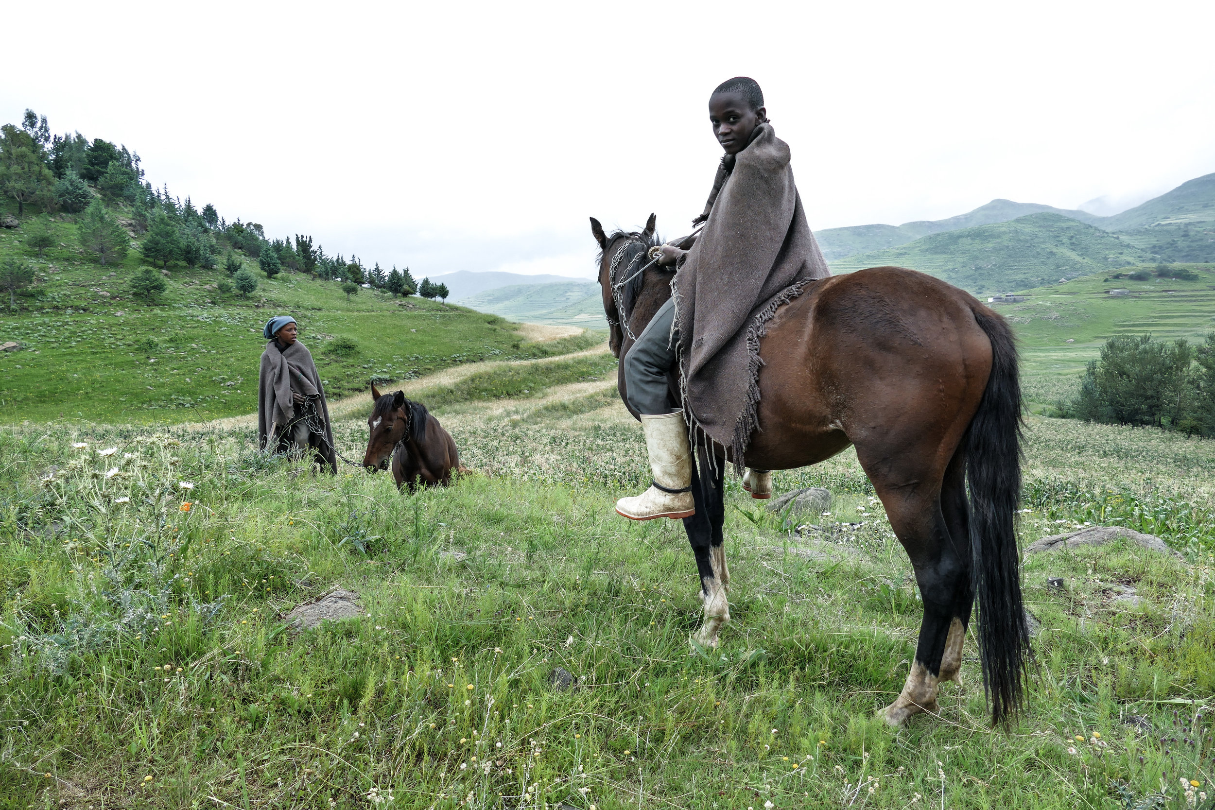 Young Basotho shepherd boys out with their horses