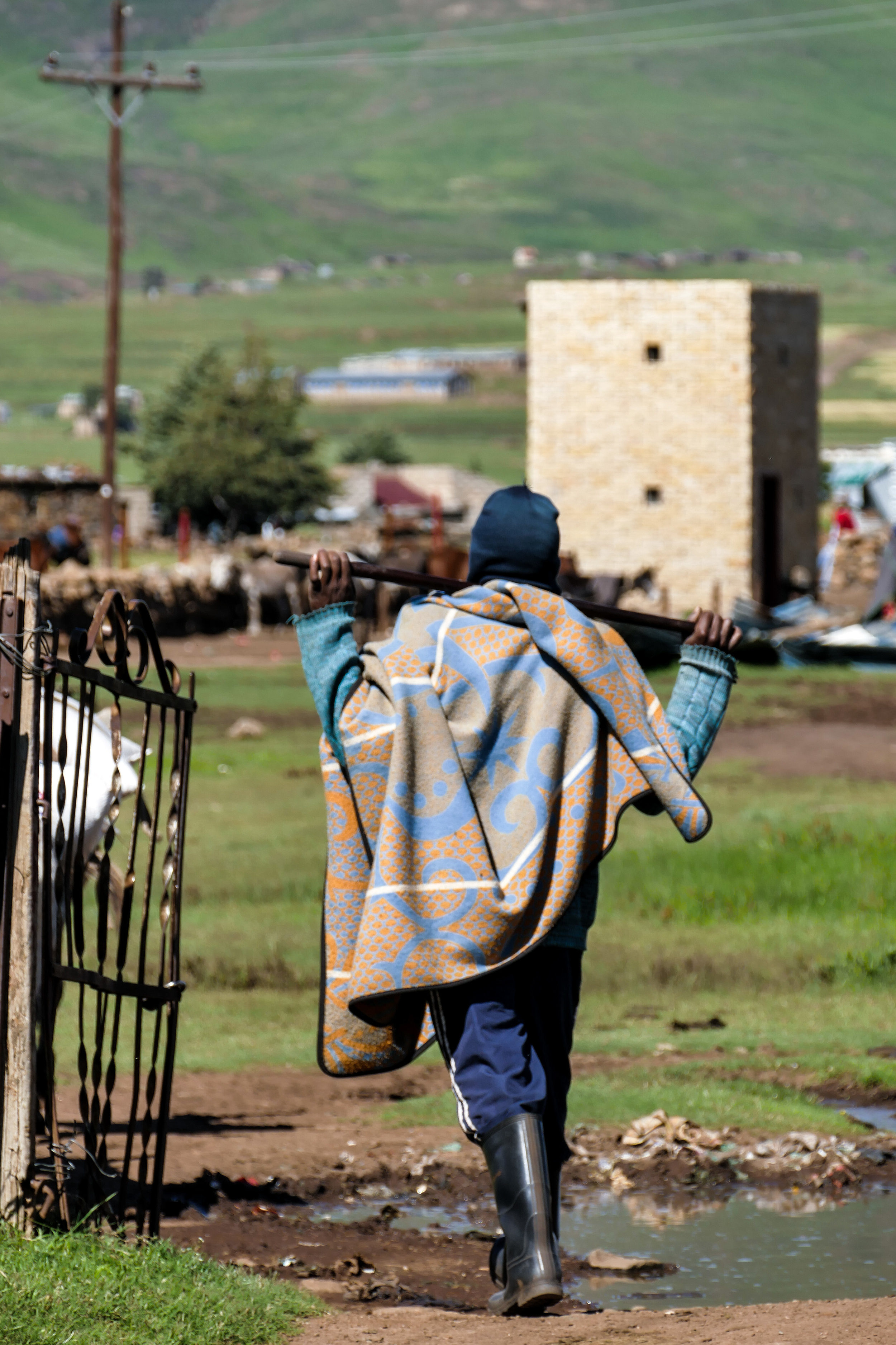 Basotho man with his donkeys passes through the town of Semonkong in Lesotho