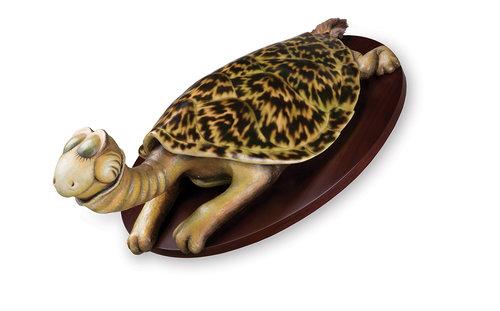 Turtle-Necked Sea-Turtle